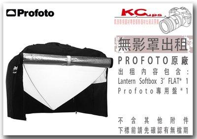 凱西影視器材 Profoto HR Lantern Softbox 3' FLAT (89x43cm) 燈籠罩 出租