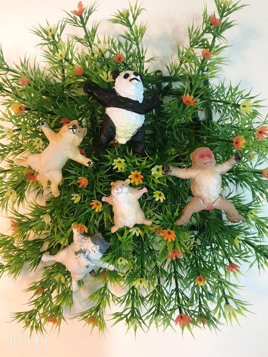 (整套販售 )現貨 BUSHIROAD 轉蛋 扭蛋 TAMA-KYU 大字仰躺動物 仰躺 大字 柴犬 貓 熊貓  猴子 單款 整套販售~現貨優惠中|