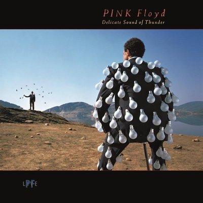 【全新CD】Pink Floyd -Delicate Sound of Thunder 現場雙CD