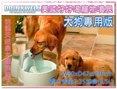 訂購@【免運-不可超取】☆SNOW☆美國Drinkwell好好喝噴泉飲水機-大狗版8.5L (80280335