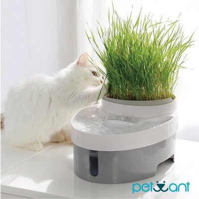 《福利品》PETWANT 自動渦流循環活水機/寵物飲水機/飼料碗(兩用) PW-101