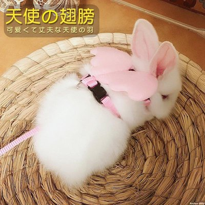 OU優品 兔子牽引繩子溜兔繩 溜兔子神器 小兔兔天使翅膀胸背帶 外出用品