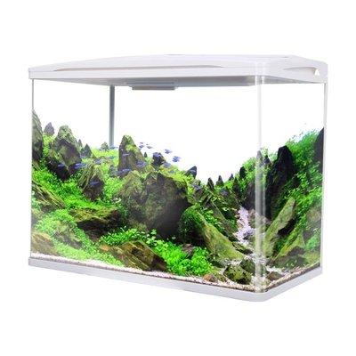小型桌面水族箱玻璃小金魚缸懶人生態過濾免換水客廳家用創意造景
