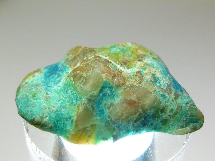 【Texture & Nobleness 低調與奢華】精品礦區 綠松石&藍銅礦共生礦 (標本 礦物 礦石 原石 原礦
