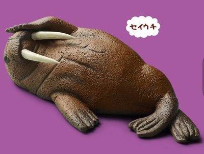 Takara 熊貓之穴 Zoo Zoo Zoo 第6彈 みないで寝 休眠動物園 P6 (海象)
