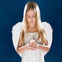 羽毛翅膀(小號-黑白雙色) 天使翅膀 飛天鵝 翅膀 天使愛心 萬聖節/聖誕節/角色扮演 配件 道具【塔克玩具】