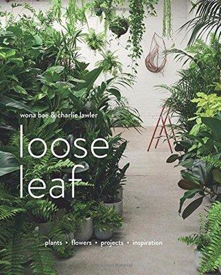 原版 Loose Leaf 《松葉》綠化空間植物花藝裝飾裝置藝術 植物插花花藝書