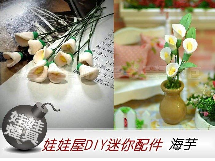 ㊣娃娃研究學苑㊣滿499元免運費 創意DIY 娃娃屋DIY迷你配件 海芋  單售價(DIY41)