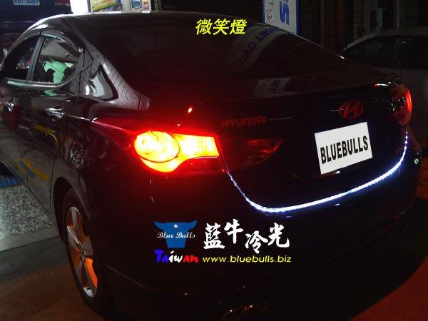【藍牛冷光】12V 24V 爆亮12顆36晶 5050 LED燈條 牌照燈 水箱罩燈 門把燈 微笑燈 氣氛燈 地板燈