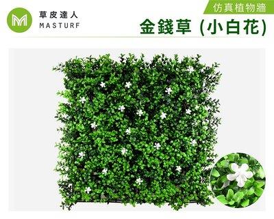 【草皮達人】金錢草 (小白花)  抗UV款 仿真植物牆 (350/片,整箱10片特價3300含運)園藝 景觀 裝潢