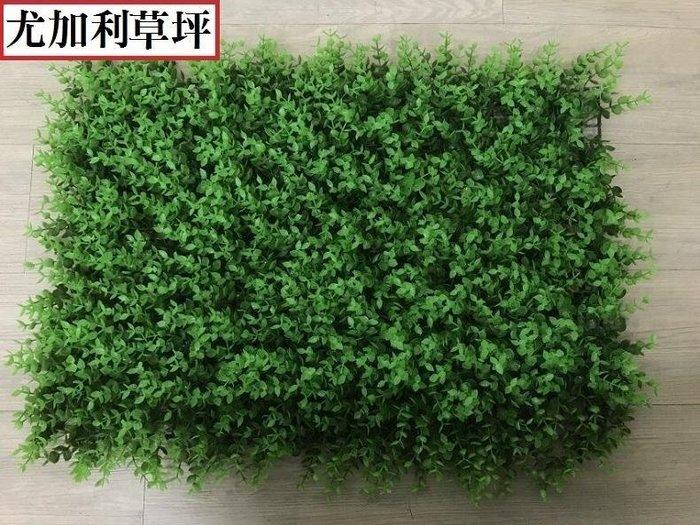 尤加利 花草牆 60*40cm 仿真植物牆 花草牆 背景牆 綠化景觀草 假草坪 人造草皮 人造花園 仿真植物
