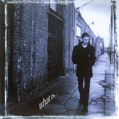 Richie Kotzen - What Is ... 二手日版