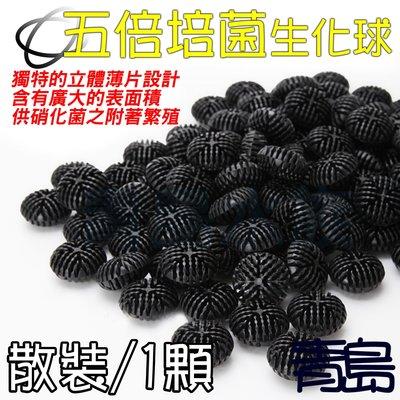 B。。。青島水族。。。台灣製---5倍培菌生化球 五倍培菌生化球 300粒超取免運 500顆宅配免運==1顆(散裝)