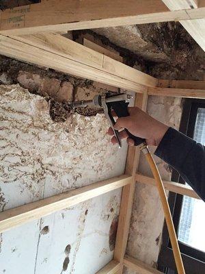 白蟻偵測 蟑螂 蛀蟲 消毒 蒼蠅 書蝨 跳蚤 蚊子 除甲醛 學校 住家 辦公室 環境維護
