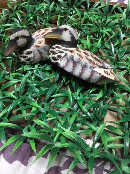 早期木製小鴨雁一對 收藏品