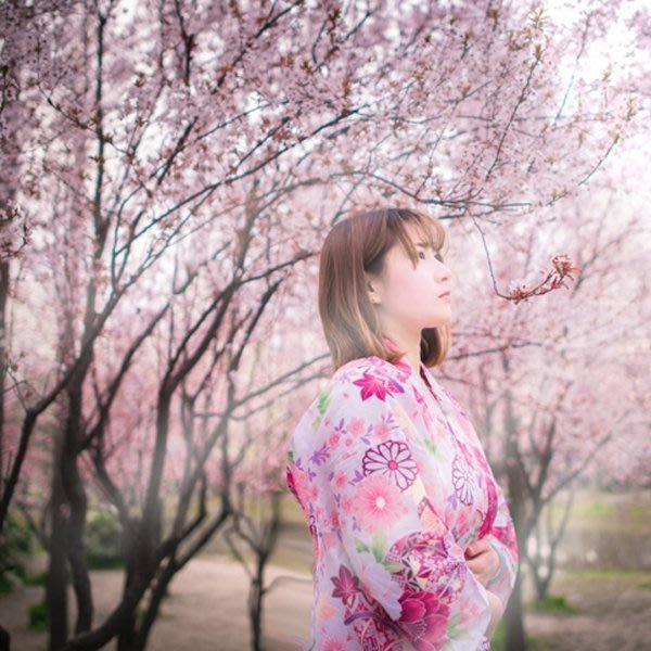 5Cgo【鴿樓】會員有優惠 6949966172 日系lolita 日本和服浴衣套裝和風 日式浴衣和服 動漫角色扮演服