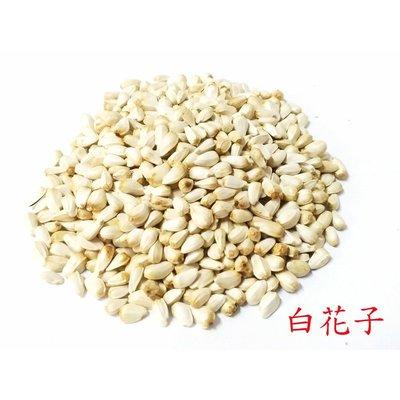 精選飼料/澳洲進口白花子~600克~/粗蛋白質維生素礦物質/鸚鵡飼料/倉鼠飼料/蜜袋鼯飼料/鳥飼料