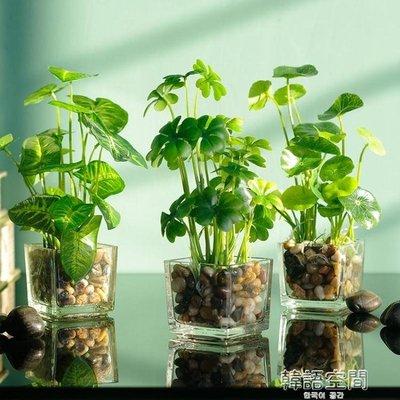 如一花開簡約家居模擬綠植花卉套裝室內客廳擺件玻璃花瓶假草盆栽