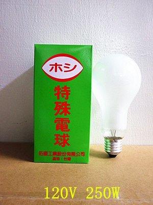 250W 鵭絲燈泡 磨砂燈泡 120V 壽命長 台灣製 單顆賣  25顆/ 箱 -【便利網】 桃園市