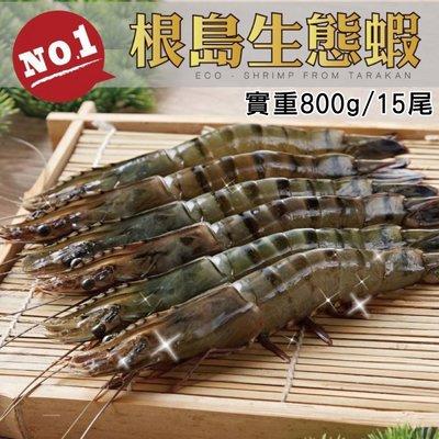 【hello ocean 】國內大廠大成無毒  超大根島生態蝦  (不吃人工飼料 絕無藥物汙染的800g 15尾下標區)