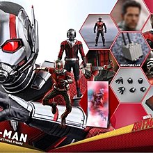 2/7 13:3x 訂單 Hottoys Ant-Man and the Wasp Ant-Man MMS497 蟻俠2 蟻俠