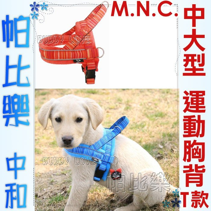 帕比樂-MNC【四季運動型中大型犬單胸背,無牽繩】T字型,中大型犬用,夜間可,防掙脫胸背