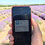 CPMAX 歐洲上網卡 美國 澳洲 法國 英國 德國 義大利 西班牙 捷克 奧地利 Three發行 台灣經銷【SIM3】