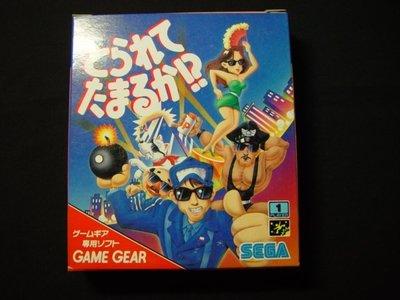 日本 SEGA GAME GEAR 1995 MADE IN JAPAN 炸彈人 卡帶 遊戲 電玩