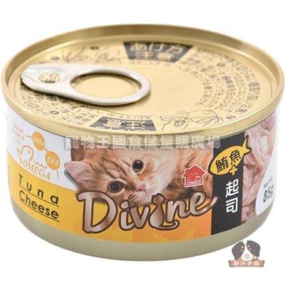 【寵物王國】沛奇-海味饗宴貓餐罐2號(鮪魚+起司)(湯罐)85g