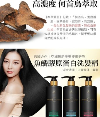 Mdmmd 明洞國際 Upra®》精油魚鱗膠原蛋白洗髮精系列/B5珍珠玻尿酸沐浴乳系列