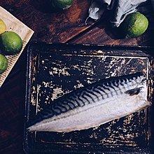 鮮鱻本舖  挪威薄鹽鯖魚 (XL),每件4公斤18片