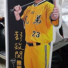 中華職棒 中信兄弟象 恰恰 彭政閔 龍馬床墊人形  大型立牌-全新