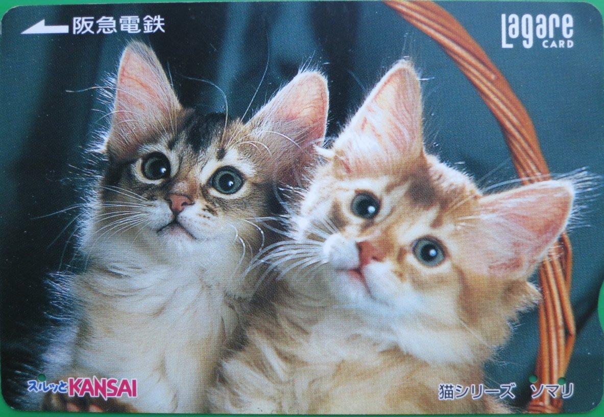 ~ 郵雅~ 阪急電鐵小猫 舊車卡NO49