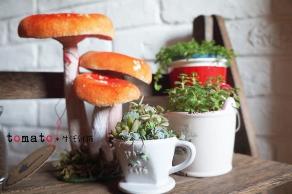 ˙TOMATO生活雜鋪˙日本進口雜貨仿真蘑菇造型裝飾家飾品