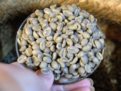 葉門瑪塔利咖啡生豆Yemen Matari Coffee bean