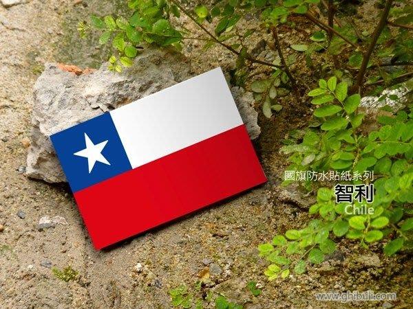 【衝浪小胖】智利國旗貼紙/機車/汽車/抗UV/防水/Chile/各國家、各尺寸均有販售