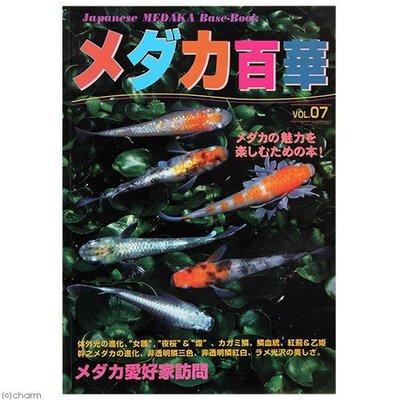 小郭水族-日本雜誌【稻田魚百華圖鑑vol.7】MEDAKA 名家訪談 愛好者訪談