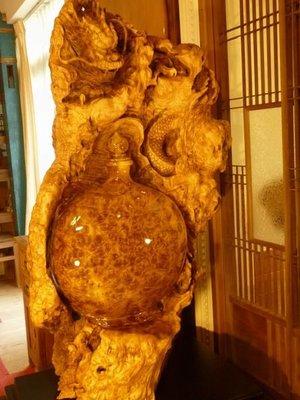 黃金樟樹瘤花瓶