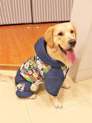 寵物衣服 大狗狗衣服金毛四腳中型犬大型犬薩摩耶拉布拉多哈士奇寵物秋冬裝AMSS