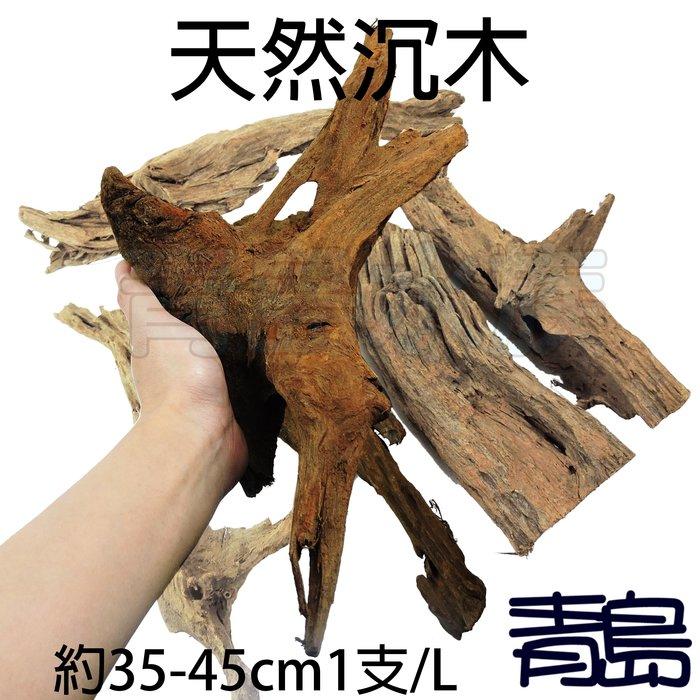 PN。。。青島水族。。。天然沉木 流木 造景裝飾 水族箱 昆蟲箱 爬蟲箱 水草箱 (約35-45cm)==1支/L
