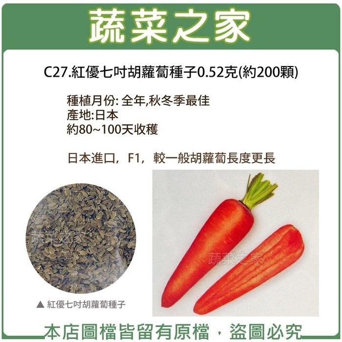 【蔬菜之家】C27.紅優七吋胡蘿蔔種子0.52克(約200顆)(約80~100天收穫.蔬菜種子)