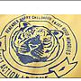 NO.108童衣著【上衣2色】新款 男童90~150cm 彈性棉 老虎印花假兩件條紋拼接袖T恤 圓領長袖上衣