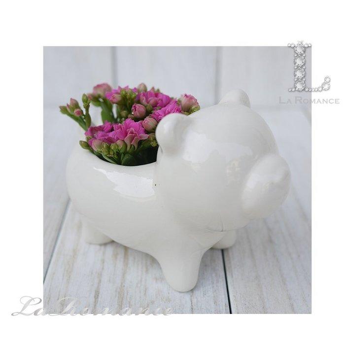 【義大利 EDG 特惠系列】 小熊陶瓷迷你花器 (白) / 盆栽 / 庭院 / 童趣