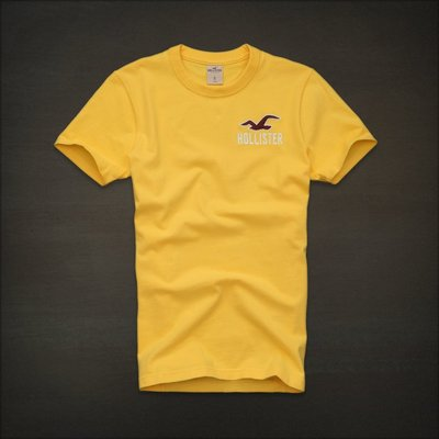 ?? Hollister 海鷗 logo 刺繡 短T (M) Abercrombie A&F Hco
