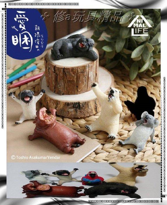 ✤ 修a玩具精品 ✤ ☾精緻盒玩☽ 研達國際 朝隈俊男 愛睏 Animal Life 一中盒8入 含隱藏版 限量特價