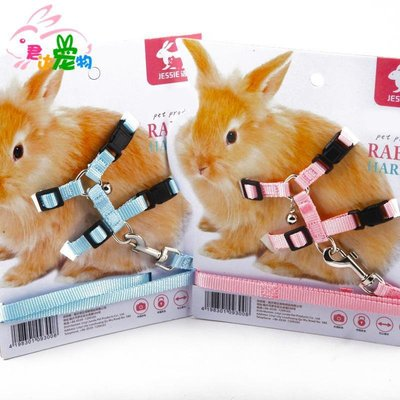 「一覽時光」 JESSIE/潔西兔子牽引帶/外帶繩/溜兔繩 多款可選 包郵多省MN67