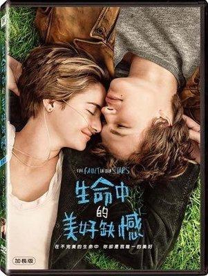 (全新未拆封)生命中的美好缺憾 THE FAULT IN OUR STARS DVD(得利公司貨)