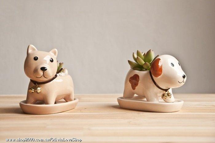 現貨【多肉露臺】黃金小狗 陶瓷 萌狗兒造型 上釉彩瓷盆 多肉植物