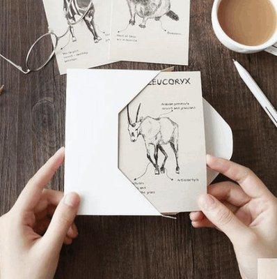 創意手繪動物圖鑒 奇妙動物在哪裡 可愛文藝風黑白小清新卡片賀卡_☆優購好SoGood☆