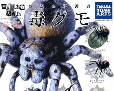 Takara 不思議生物大百科 蜘蛛 毒グモ (全套5隻) 2010年